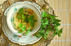 peppermint green tea