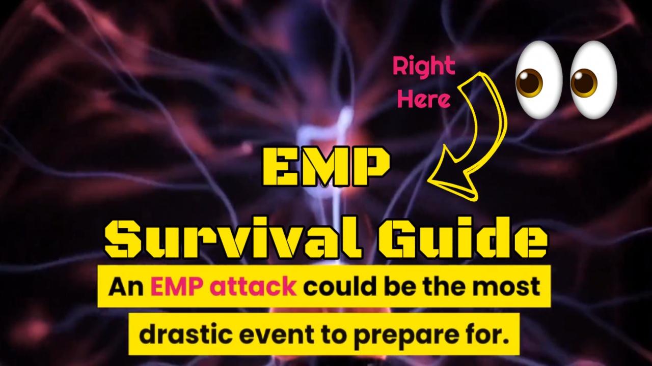 emp attack survival guide